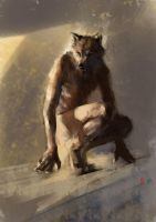 Squat wolf by racoonwolf