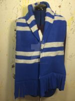 Harry Potter: Ravenclaw Scarf by KungPowCREATIONS