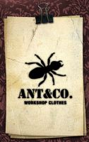 Ant and Co by paulosanlazaro