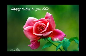 Happy B-day to you Edie by Zlata-Petal