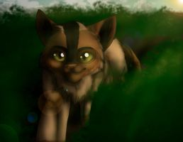 Forest cat by JinxBC