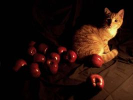 Tigazo with Red Apples by PTPenguino