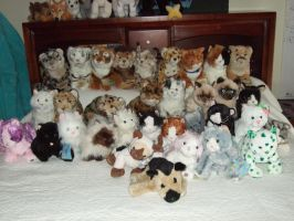 My Webkinz Collection by Itachislilgirl