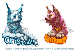 Badges Cristal and Citrine by Pample