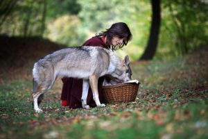 Little Red Riding Hood IV by Mr-BigMan