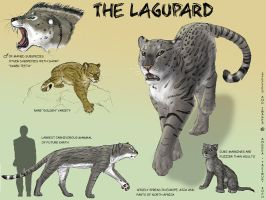 Lagupard species sheet by Tacimur