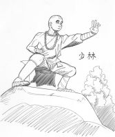 Shi Ling The Shaolin Monk by avary