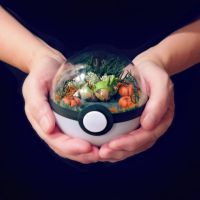 Chespin Pumpkin Patch - Poke Ball Terrarium by TheVintageRealm