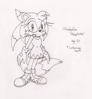 Pt.Adoptable Character 1:Taken by IkaritheHedgehog