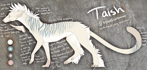 Taish Simple ref 2012 by Kieraux