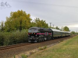 0659 001 with special train near Gyorszabadhegy by morpheus880223