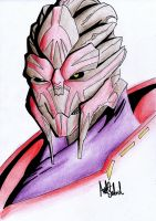 Turian Anger 'Coloured' by JiPoJiP