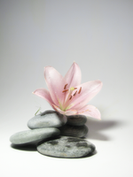 Zen to the Sky by Rivana