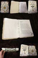 Handcrafted Clay-covered Book Avis Wing Birthday by SonsationalCreations