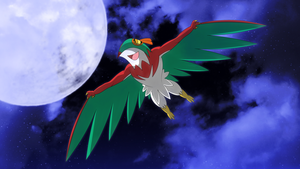 nightsky hawlucha wallpaper