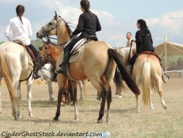 Hungarian Festival Stock 071 by CinderGhostStock