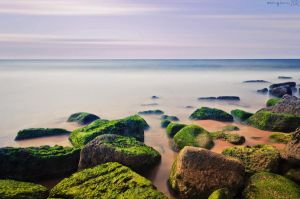 Mossy rocks by MarioGuti