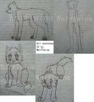 Wolf Sketches - Choose the sketch you'd use by Twine-Adopts