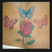 rose with butterfly by JesseDelRio