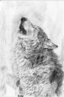 Grey Wolf howling by Pen-scribble