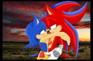Love at first sight by Flash--the--Hedgehog
