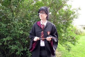 Harry Potter Cosplay 33 by KatintheAttic