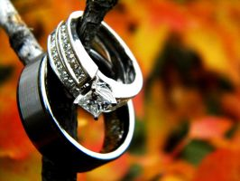 Wedding Rings by Speacial-J-Cerial