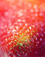 Strawberry by SheilaBrinson