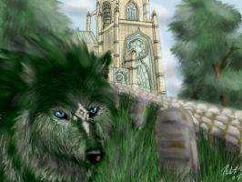 Wolf Link: The Temple by neecolette