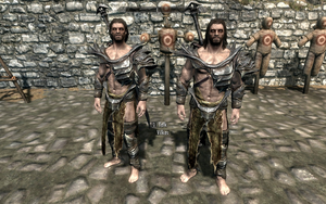 Farkas 'n Vilkas in Falmer Armour by Mediziner