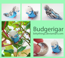 Budgerigar - GIFT by Bittythings