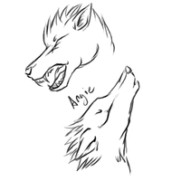 Wolf Head Sketches by Roguelucifer