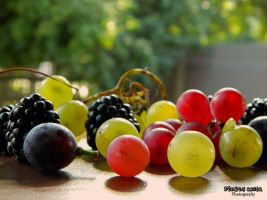 Fruity 2 by AnitaBright
