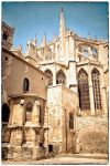 Cathedral of Narbonne II by calimer00