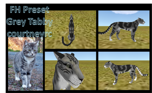 Grey Tabby ~Preset Commission~ by courtneyrc