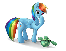 Rainbow Dash with Tank by quila111
