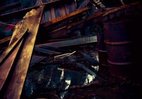 Abandoned Farm Series 4 by PinkPanther21