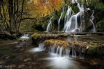 Dream of the fall... by emmanueldautriche