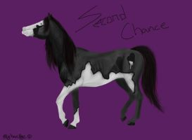 Second Chance by fairybloom28