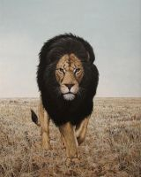 The Black Maned Lion by CitizenOlek