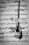 Music Heals by Mheely
