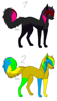 Scene dog adopts ALL TAKEN by Lolzeeh