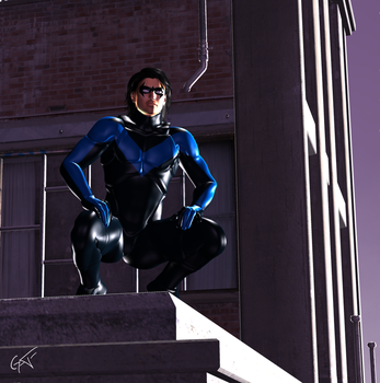 NightWing Watches the City by GustavoArmando