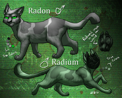 Radon and Radium Ref by Urnam-BOT