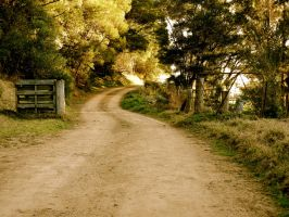 Country Road II by MadeleineAlana