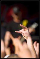 Throw Up Your Rockfist by StudioFovea