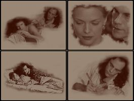 Dangerous Liaisons collage 2 by noema-13