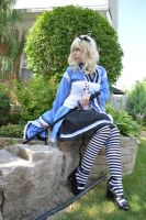 Armed Alice 4 by shelle-chii
