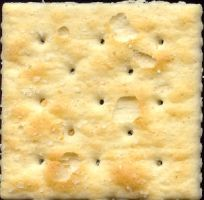 Saltine by malinhion