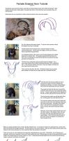 Female Draenei Horn Tutorial by Elorviel